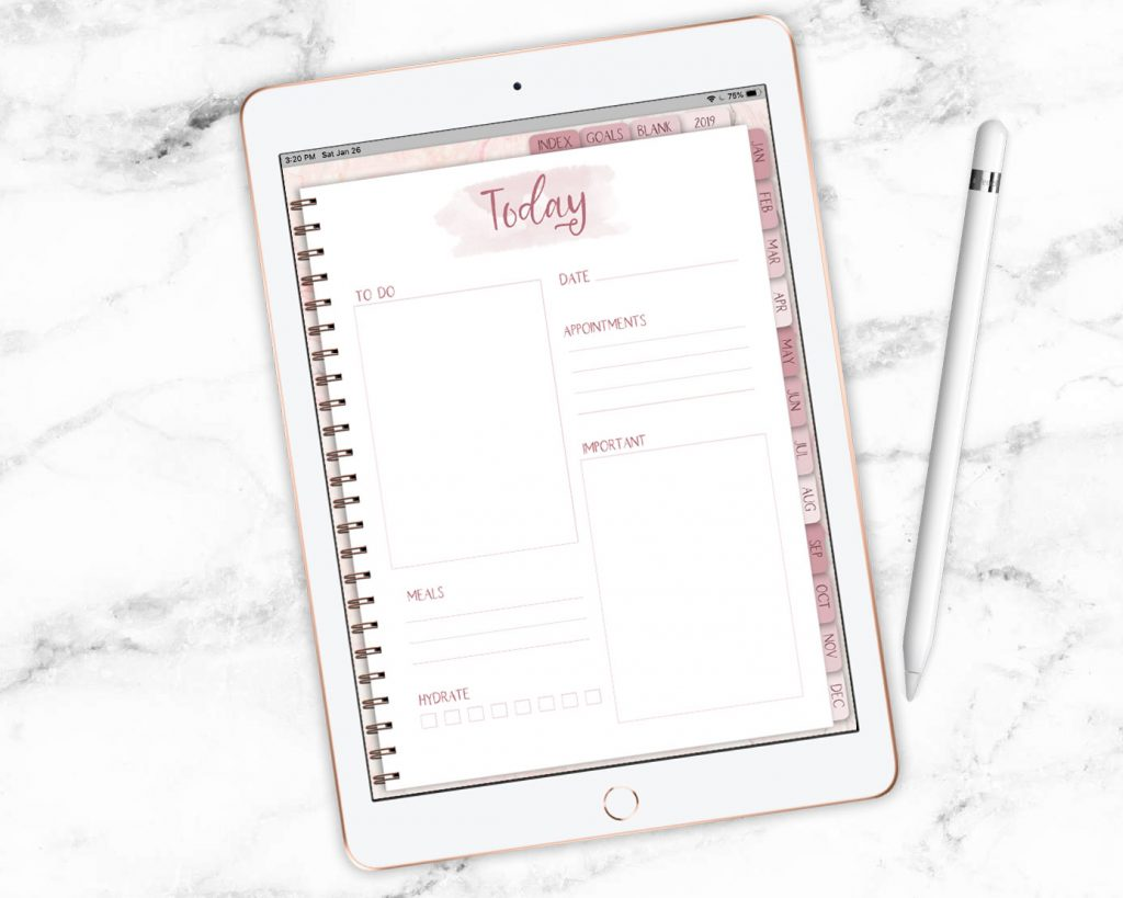 Rose Gold Digital Planner